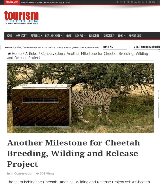 Ashia Cheetah Conservation_Milestone_for_Cheetah_Breeding_Wilding_08 November_2019