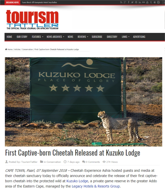 Ashia Cheetah Conservation_Tourism Tattler_10 Sep 2018