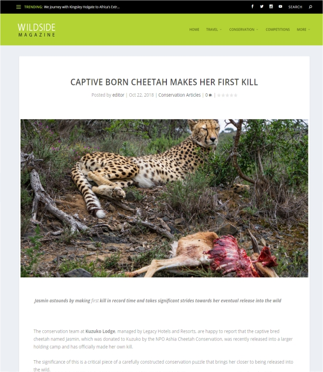 Ashia Cheetah Conservation_Wildside Magazine_22 Oct 2018