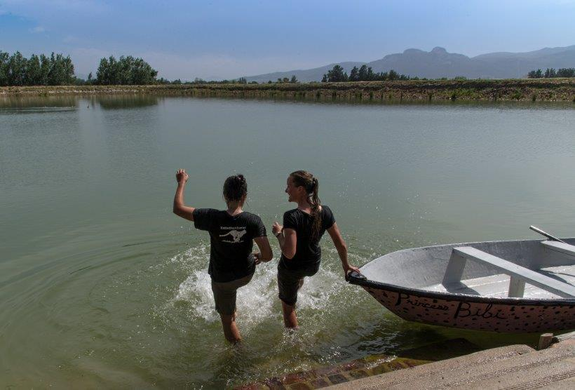 Volunteers cooling down by the dam at Ashia, Paarl.