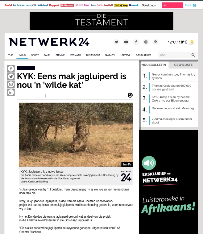 Ashia_Cheetah_Conservation_Mak_Jagluiperd_Is_Nou_'n_wilde_kat