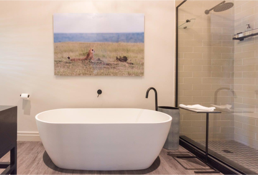 Caracal designed suite guest accommodation available at Ashia.