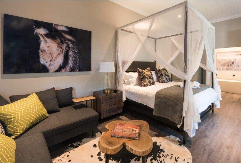 Serval suite guest accommodation available at Ashia.