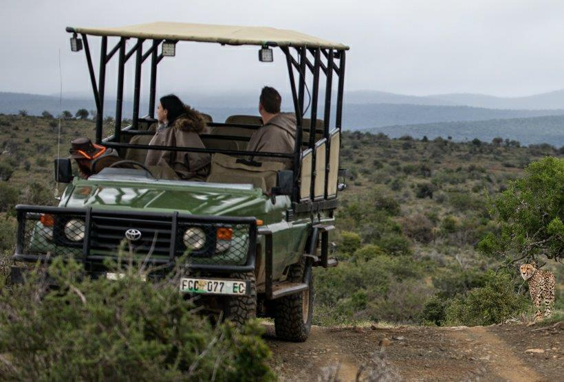Game rides available Kuzuko for tourists to watch for cheetahs.