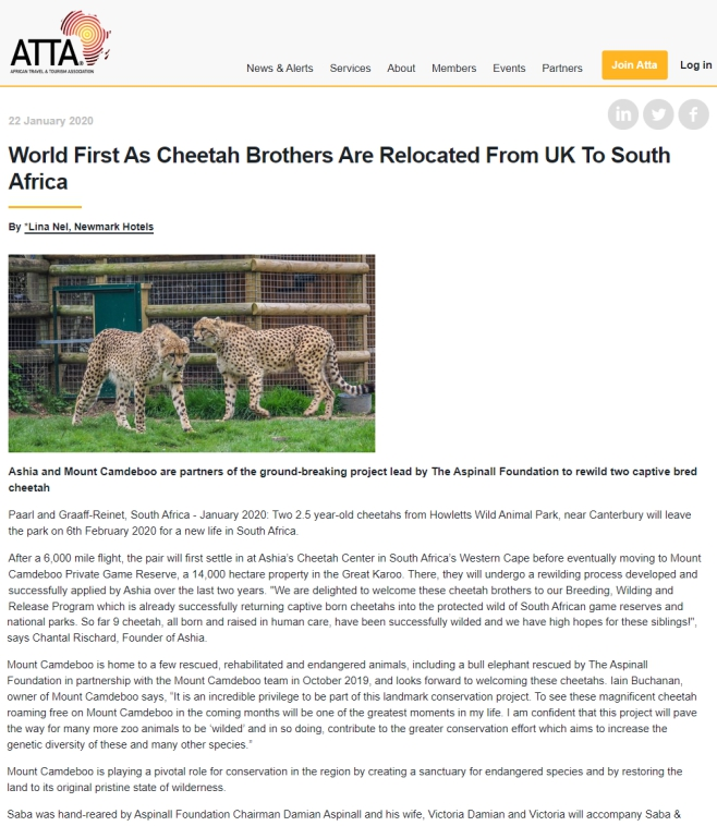 ATTA-Cheetah-Brother-Relocated-to-SA-Ahsia-22-Jan-2020