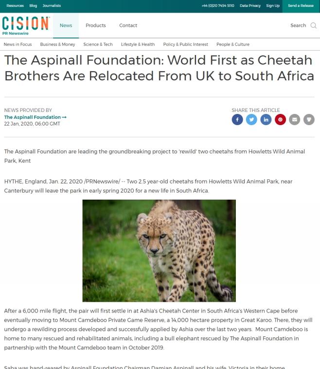 CISION-Aapinall-Foundation-Cheetah-Relocation-to-SA-Ashia-22-Jan-2020