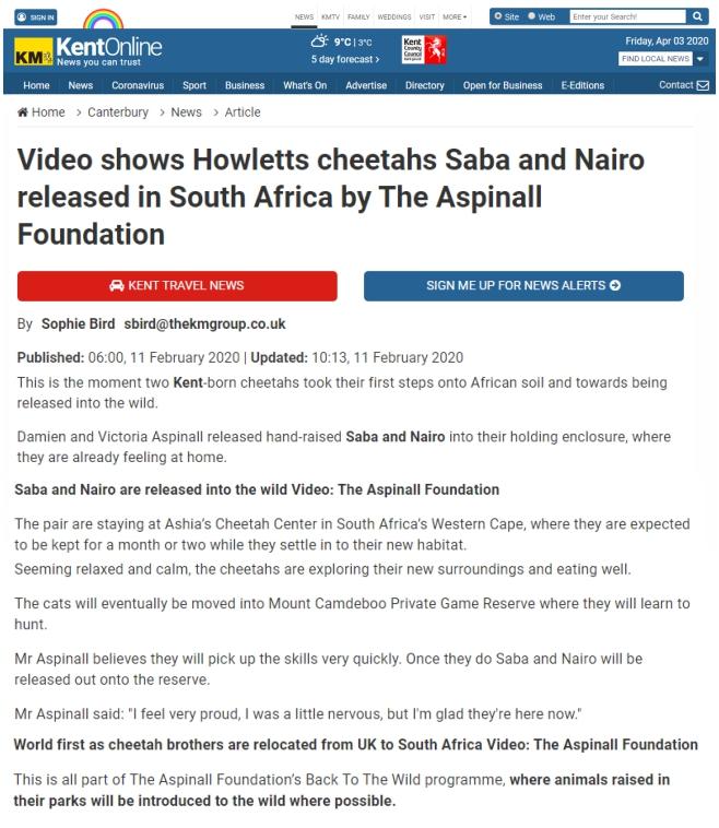 News-Video-Ashia-Cheetah-Sanctuary-Cheetahs-Saba-&-Nairo-11-Feb-2020